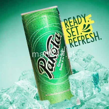 Pakola Ice Cream Soda Can 250 ML